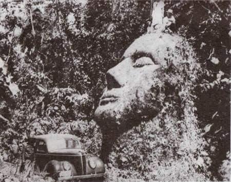 bianco viso guatemala